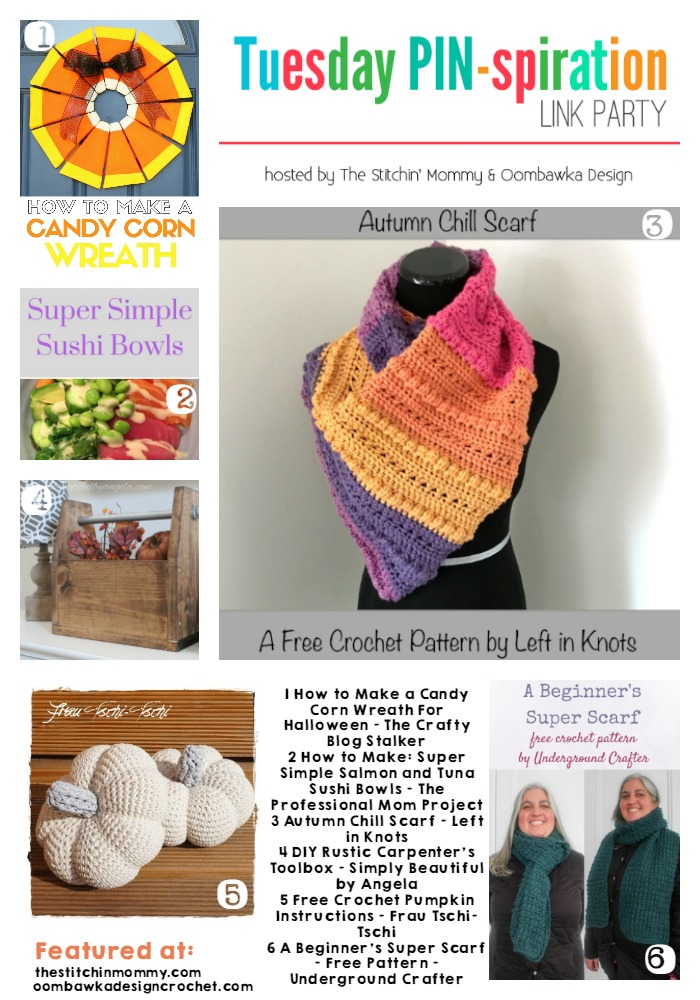 The NEW Tuesday PIN-spiration Link Party Week 13 (10/3/2016) - Rhondda and Amy's Favorite Projects | www.thestitchinmommy.com