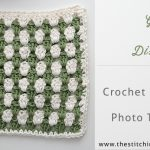Granny Stripe Dishcloth Free Crochet Pattern with Photo Tutorial