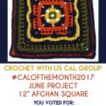 You Voted! Your June #CALoftheMonth2017 Afghan Square Pattern is…