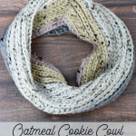 Oatmeal Cookie Cowl – Free Crochet Pattern