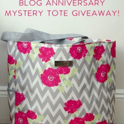 Blog Anniversary Mystery Tote Giveaway!