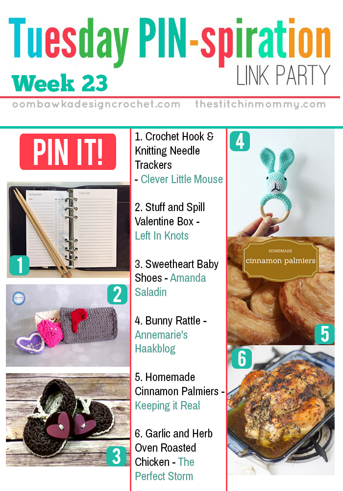 The NEW Tuesday PIN-spiration Link Party Week 23 (2/6/2017) - Rhondda and Amy's Favorite Projects | www.thestitchinmommy.com