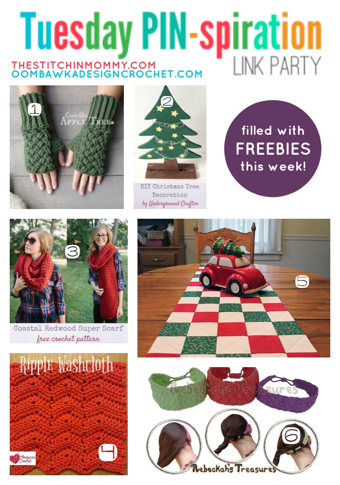 The NEW Tuesday PIN-spiration Link Party Week 18 (1/2/2017) - Rhondda and Amy's Favorite Projects | www.thestitchinmommy.com